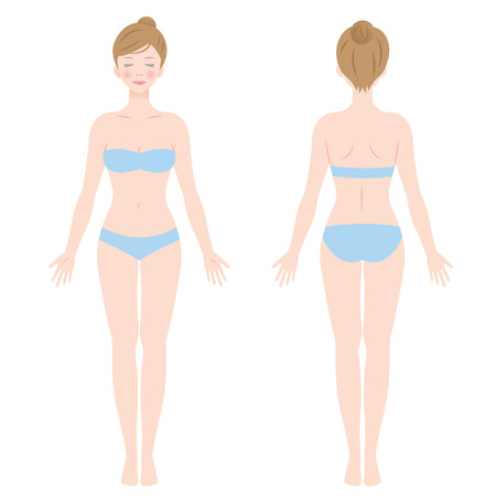 A female body on front and back view Isolated vector illustration.