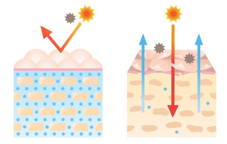 Ilustración de diagrama de piel sana y seca. concepto de belleza y cuidado de la piel