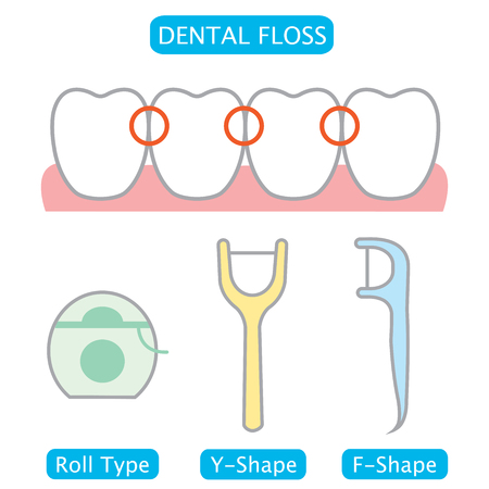floss remove germs,plaque, and food particles between teeth  Illustration