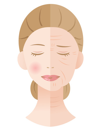 young and aged winkled female skin illustration isolated on white background  イラスト・ベクター素材
