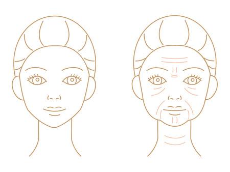 young and aged winkled female skin illustration isolated on white background Illustration