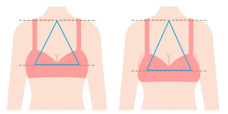 ideal chest form is regular triangle connecting three points from center of clavicle to top breast. sagging boobs shape isosceles triangle Stock Illustratie