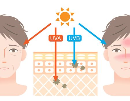 skin layer of ultraviolet rays and cute man face. UVA rays cause skin aging and wrinkling. UVB rays cause skin reddening and sunburn. Isolated on white background Vector Illustration