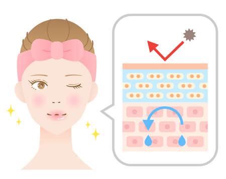 youthful skin diagram and female. Beauty skin treatment. Isolated on white background Ilustrace