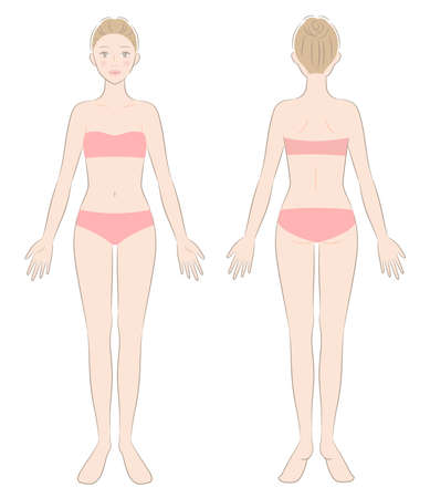 woman full body. front and back view of standing female. Beauty body care concept 矢量图像