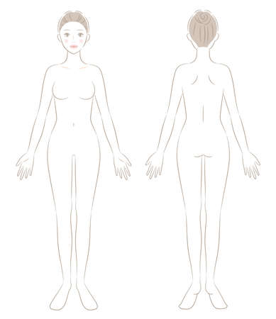 naked woman full body front and back illustration. Beauty and health care concept 矢量图像