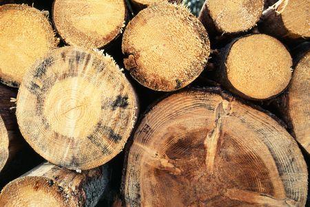 Chopped wood background photo