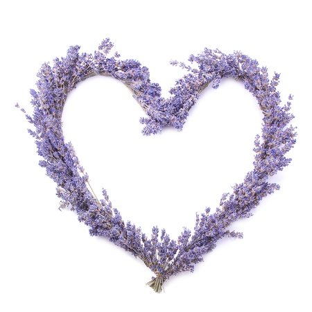Lavender heart, isolated. photo