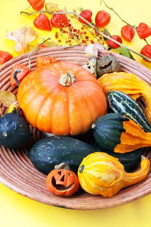 Halloween pumpkins, compostion. Stock Photo
