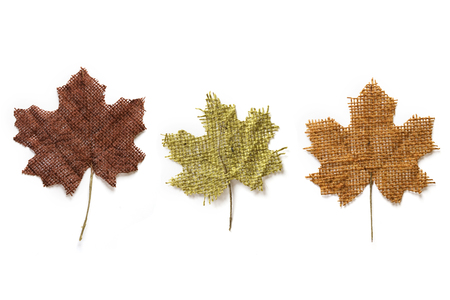 Autumn maple leaves made from twine Stock Photo