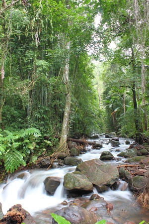 The beautiful waterfall at Phusoidao, Thailand photo
