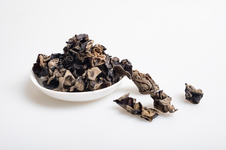 black fungus Stock Photo