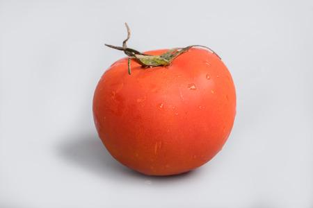 gules: tomato on white background