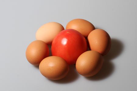 vegetative: Eggs with tomato