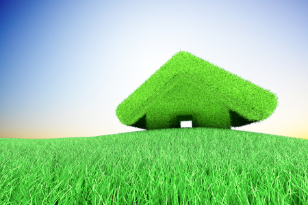 Green small house on the grassland