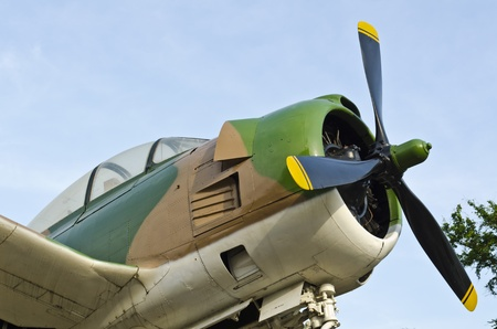 Old fighter and freedom in the sky photo