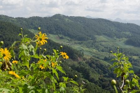 Doi Mae U Ko, Scenic mountain peaks  Mae Hong Son, Northern Thailand  Stock Photo