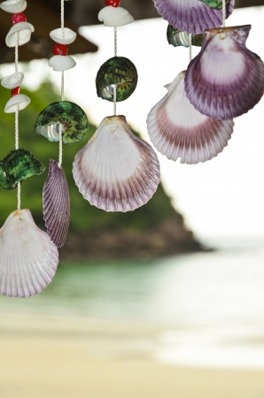 adorned: Shells hanging rope  Adorned on the front beachside villa  Stock Photo