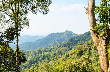 kaeng: High angle view forest mountain and sky from Panoen Thung scenic point at Kaeng Krachan National Park Phetchaburi province in Thailand