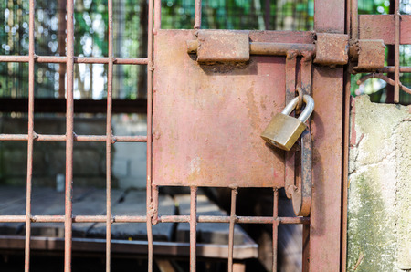 Steel cage door was locked with a key. The problem of illegal wildlife trade