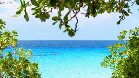 wide screen: Beautiful blue sea looking through twigs and green leaves from the beaches of Koh Miang island is a attractions famous for diving in Mu Ko Similan National Park, Phang Nga Province, Thailand, 16:9 wide screen Stock Photo