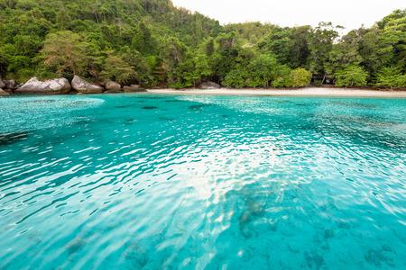 honey moon: Beautiful green blue sea front small beach at Honeymoon Bay