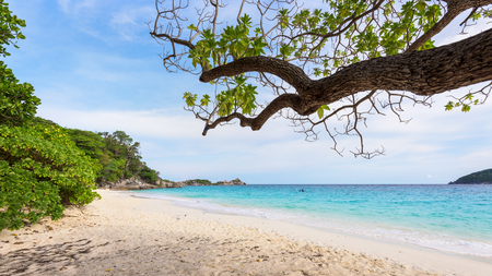 blue widescreen widescreen: Beautiful landscape sky and blue sea under a green tree at beach of Koh Miang island is a attractions famous for diving in Mu Ko Similan National Park, Phang Nga, Thailand, 16:9 widescreen