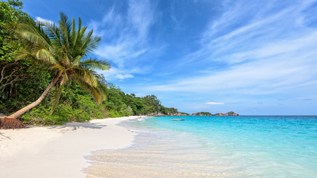 blue widescreen widescreen: Beautiful landscape of blue sky coconut sea sand and waves on the beach during summer at Koh Miang island in Mu Ko Similan National Park, Phang Nga province, Thailand, 16:9 widescreen