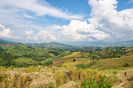Beautiful landscape of rice farmland on the foothill in northern Thailand