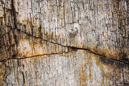 Rough and cracked texture pattern of the old black white and brown or rust color stone surface, Strong structure durable nature of rock for abstract grunge background 스톡 콘텐츠