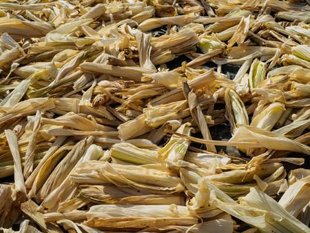 husks: The husks were left from corns, Corn husks