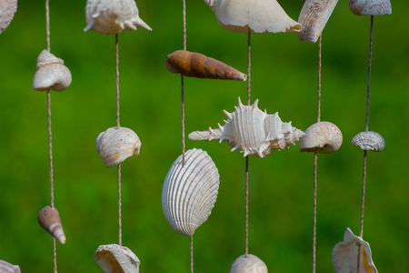 Sea shells are combined to make decorative ornaments.