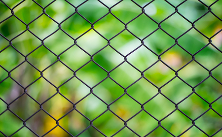 Grid mesh image with background in abstract green-yellow color at blur.