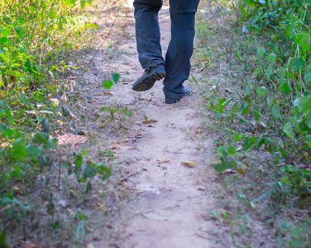 A person walking a natural path