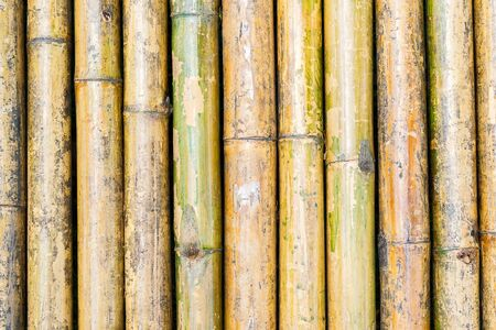 Nature Bamboo floor for background