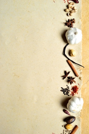 garlic and spices Stock Photo - 10080435
