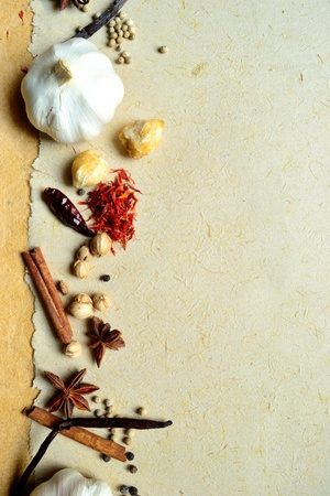 garlic and spices Stock Photo - 10081120