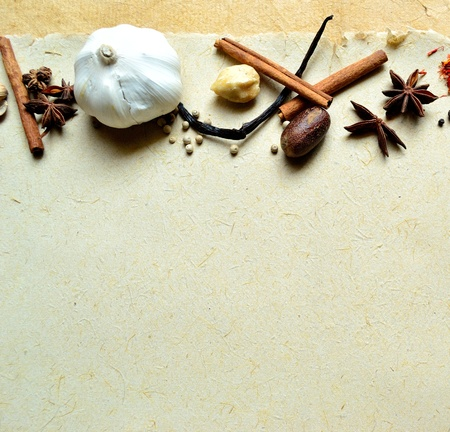 garlic and spices Stock Photo - 10080436