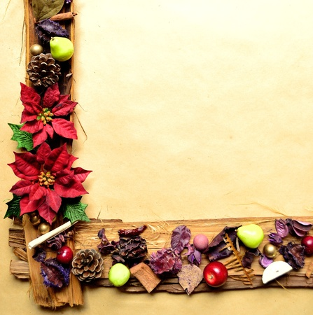Red poinsettia and fruit christmas frames photo