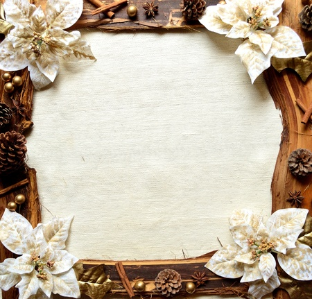 White poinnsettia frame photo