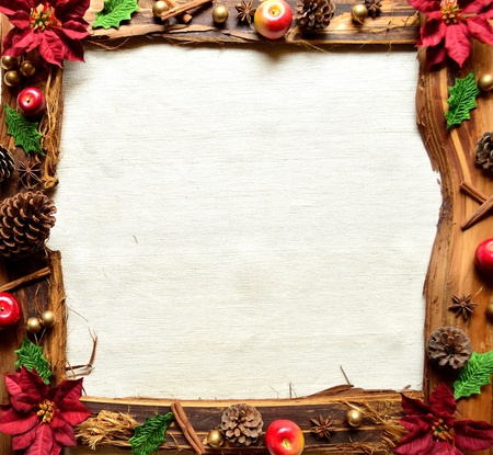 Red poinsettia and fruit . christmas frames photo