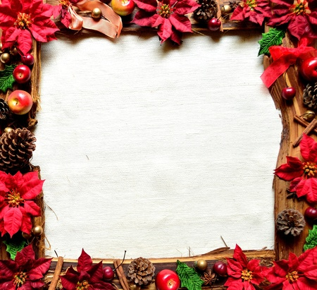 Red poinsettia and fruit . christmas frames