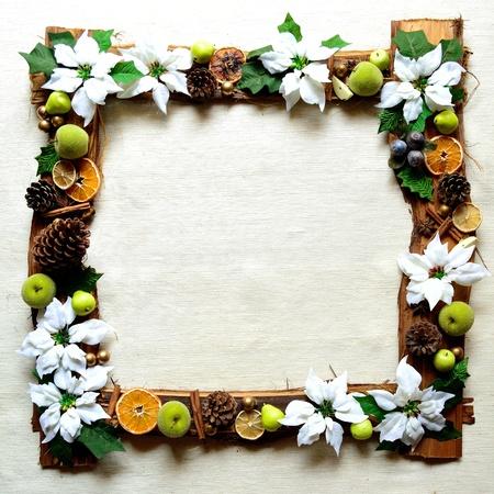 흰색 포 인 세 티아와 과일입니다. 크리스마스 프레임 스톡 콘텐츠