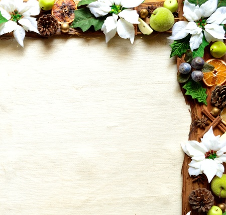 white poinsettia and fruit . christmas frames