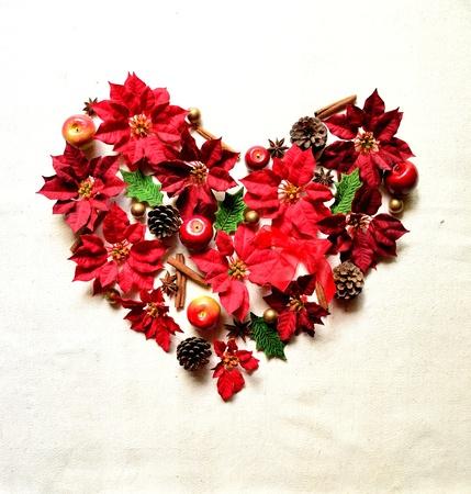 red poinnsettia.heart