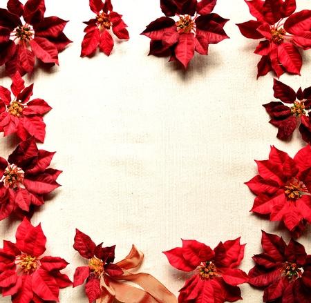 クリスマス ポインセチア赤フレーム