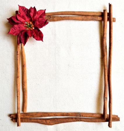 Red poinsettia and cinnamon. christmas frames photo