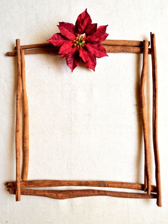 Red poinsettia and cinnamon. christmas frames