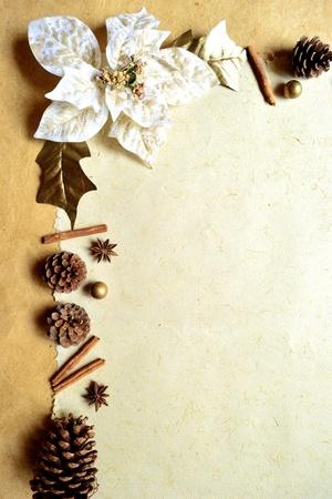 pine cone: white poinsettia and pine cone Stock Photo
