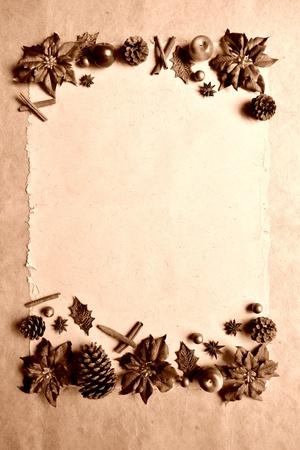 poinsettia and spice.sepia Stock Photo - 10416503